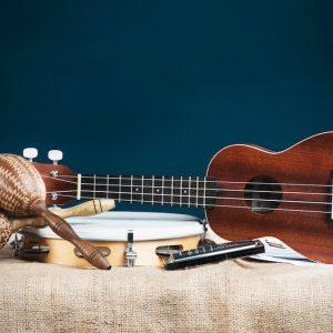 Glazbena kultura - instrumenti